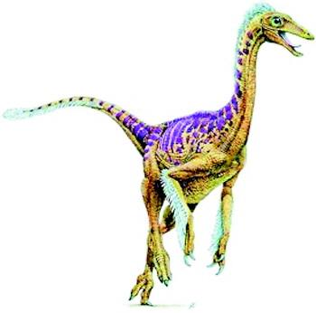 恐龙家族大灭绝_恐龙种类名称及图片大全 _排行榜大全