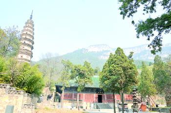 浙江绍兴市马山镇自然风景